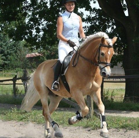 frau-auf-pferd